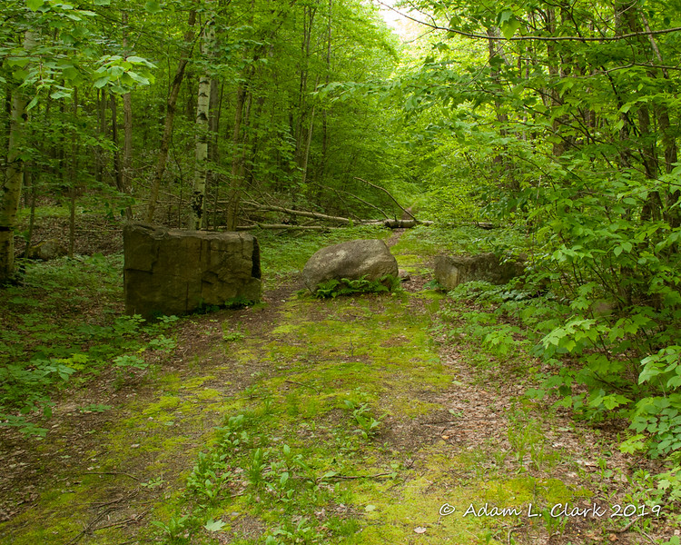 The three rocks at the start of the forest road along Haystack Road