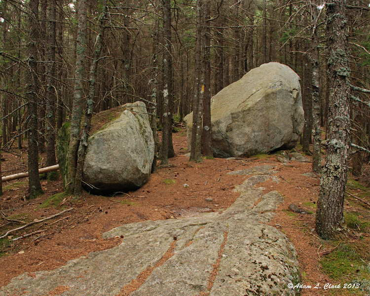 The large boulders right next to the trail.  There weren't any others around