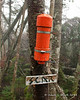 The summit canister is bright orange which helps you find it in the mix of trees and debris at the summit