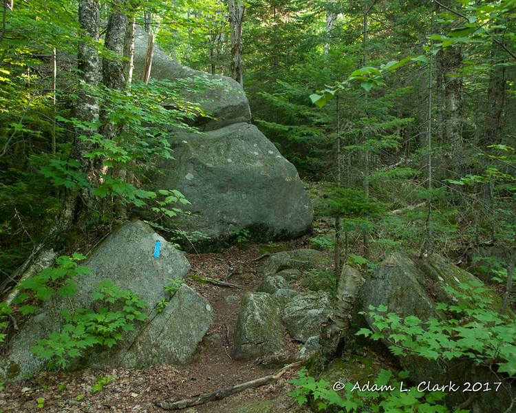 Some rocks along the trail before the real climb starts