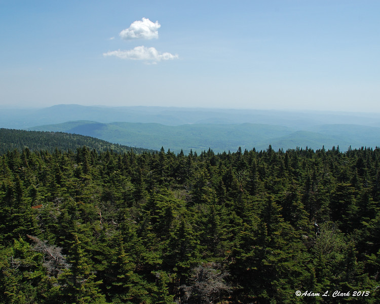 View to the east from the fire tower