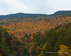 Mt. Guyot and Zealand Mtn. as seen from Thoreau Falls
