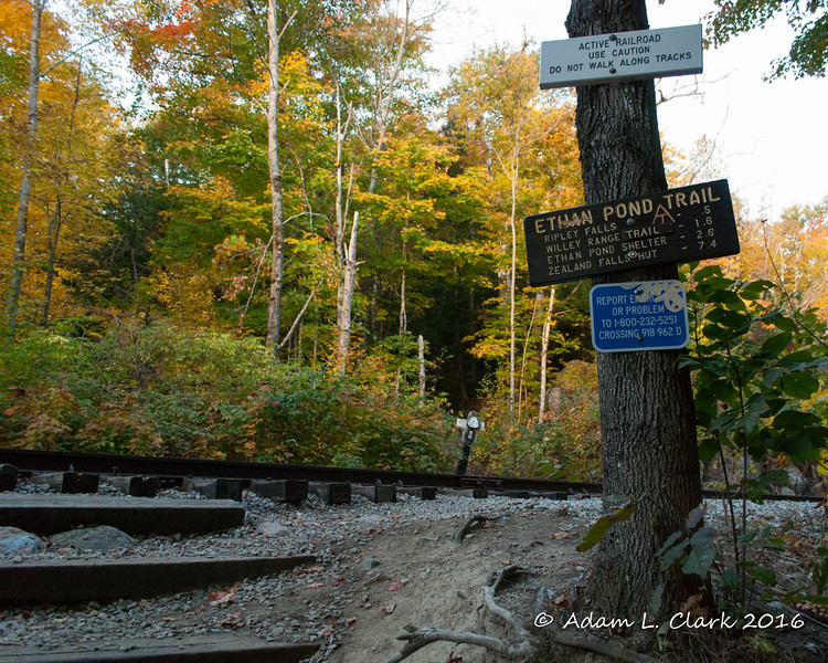Almost within sight of the parking area, the trail crosses the railroad tracks.  As noted by the signs, these tracks are still currently used