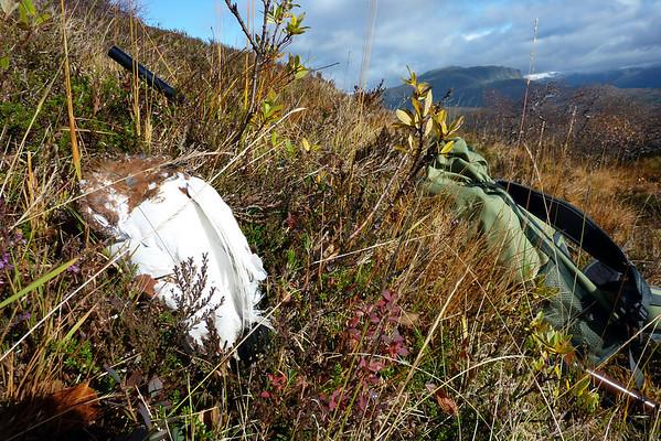 Endeleg opphaldsvær og jakt-tur...29.09.2009