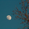 Jan 5th 2012 -- Early evening Moon.