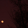 Jan 6th 2012 -- Friday Moon!