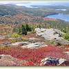 AcadianAutumn2S