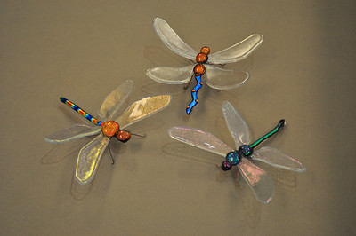 Dragonfly 16,17,18