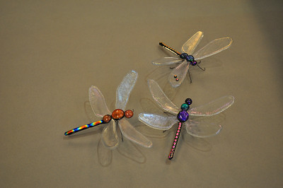Dragonfly 10,11,12