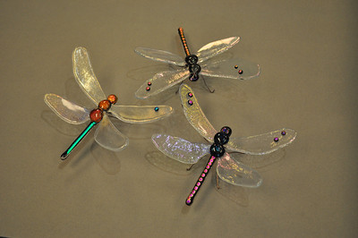Dragonfly 19,20,21