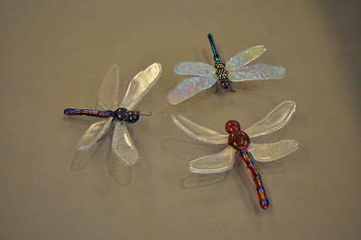 Dragonfly 1,2,3