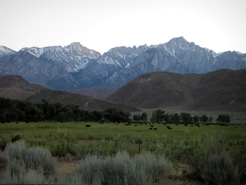 June 2005 view looking west from the Alabama Hills area along the Mt Whitney Portal Road towards the Mt Whitney peak complex. Still quite a bit of winter left over in early summer!