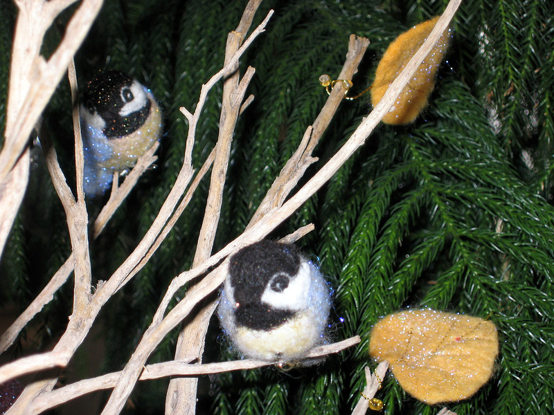 Chickadee wool birds.