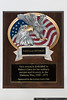Commemorative plaque presented to Viet Nam veteran Robert Cuce by the Long Island Scale Model Society.