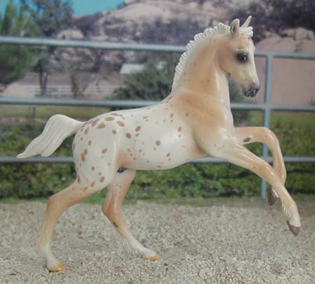 Chaney Welsh Section D Cob Foal by Animal Artistry, 2012 Lone Star Live SR
