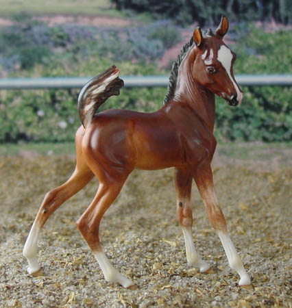 Fraley Biendecado OF China by Horsing Around