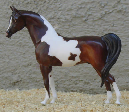 Chaney Arabian Gelding OF China 2002 Show Special by AAA