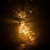 July 14 Ray of Light