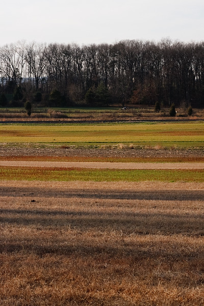 Gettysburg_Rday09-38