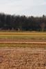 Gettysburg_Rday09-47