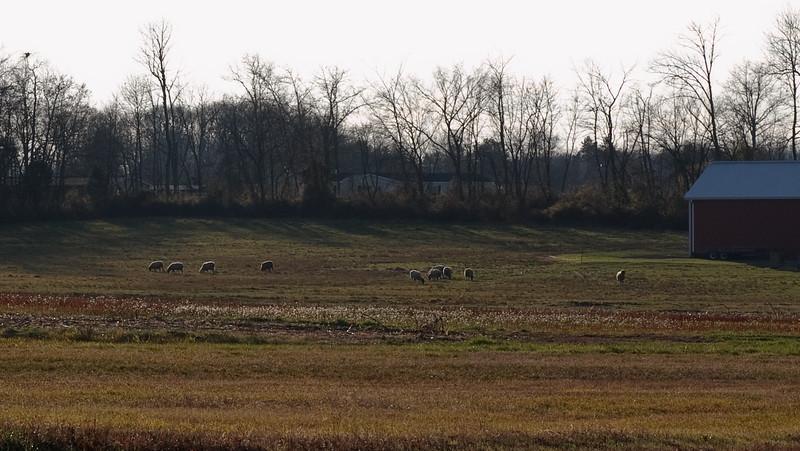 Gettysburg_Rday09-43