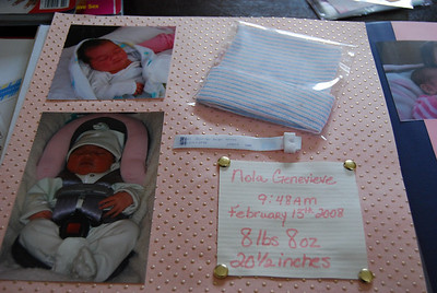 Jennifer and I made this during my stay in Pennsylvania in February 2008.  Welcome home baby Nola!