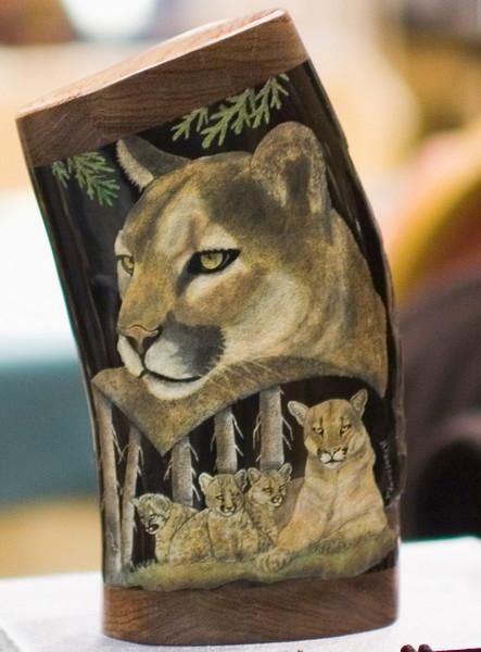 Mountain lion family, scrimed by Gaétan Beauchamp.