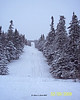 One of Melissa's pictures of the border swath. I was up on the hill playing. That is Canada on the left and the US on the right. The small gray post in the middle of the trail at the base of the hill is the border marker. It is about 5 feet tall, but is only sticking out about 1 foot right now.<br /> 2/9/08