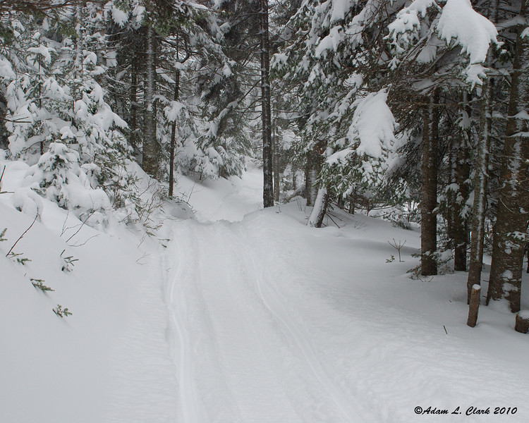 The trail coming up to Perry Pond
