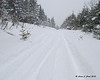 Fresh powder out off the main trails with more still coming down