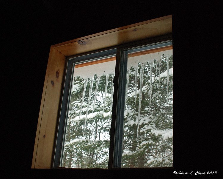 Morning view out the cabin window from bed
