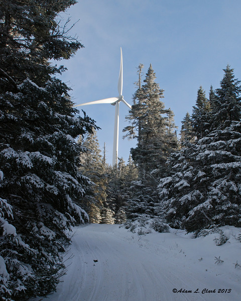 A windmill at the summit towering above the trees