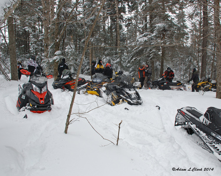 Some of the sleds in our group this morning