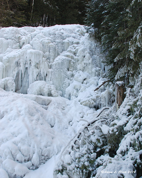Before the falls froze over, the trees were iced up from water spray