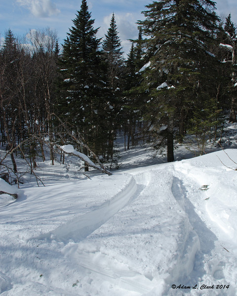 The path up to where I was stuck.  You needed to go up and to the left of the downed tree, then to the right of the root ball (just out of sight on the right side) then back left into the small opening.  Notice the deep trenches in the snow I had to deal with while trying to go up