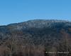 Looking up at the summit of Mt. Magalloway