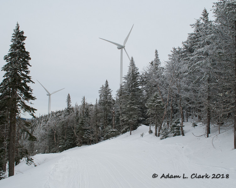A couple of wind turbines as seen from the trail