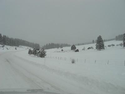 snowshoeing 12.21.08
