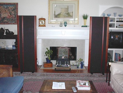 Magnepan MG3.6R's with the Sonic Frontiers Power 2 amplifier.  Maggies are among the best sounding speakers available, but they are ridiculously inefficient. The 3.6's require about four time the power of a pair of Vandersteen 2CEsigs to achieve the same volume level. Low power tube amps need not apply.