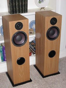 "High efficiency speaker incorporating an Eminence Alpha 8 woofer and a GR Research T-6 tweeter in a 1.5 cu ft tower enclosure. Nominal impedance is 8 ohms, sensitivity is about 95dB. First order crossover. The enclosure is tuned to 54hz using a 4"" id port. Pictured here veneered in natural red oak."