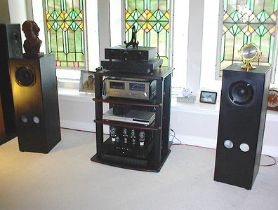 """Audio Nirvana 8"""" single driver speakers. These drivers have a rising frequency response below 1khz. Even with a bsc filter they are some of the worst sounDing drivers I've heard. I'm talking BRIGHTANDINYOURFACEBADSOUNDING!"""
