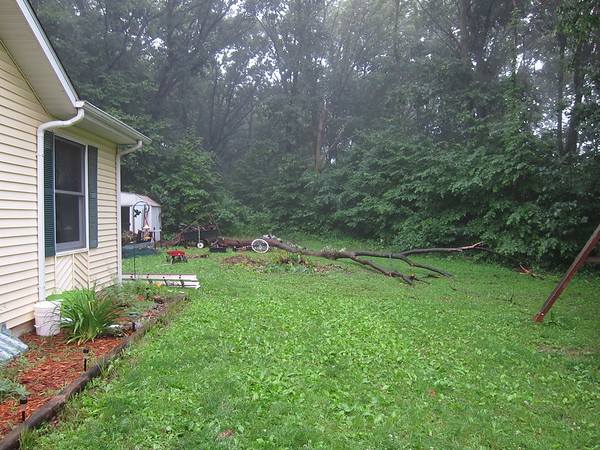 But then this happened.......the very next day, no kidding!  I was driving the boys to swimming lessons, still mad at that tree, wishing it would just fall down.  And it did.  We got home from lessons and I couldn't believe it!  It didn't hit a single thing either!  Not the house, or the shed, not all the stuff from the shed, nothing!