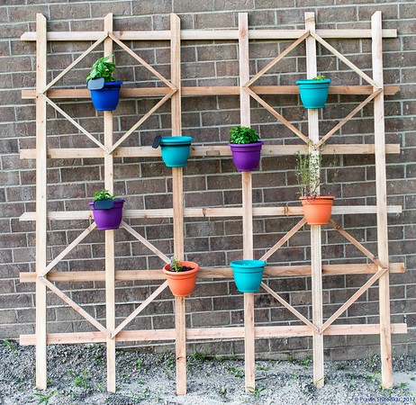 Trellis with herbs in planters