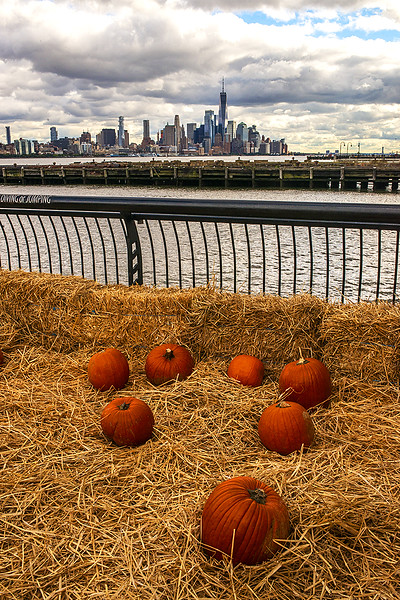 Pumpkins on Pier in Hoboken
