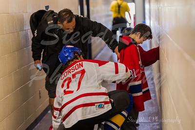 Hockey Heroes 2017