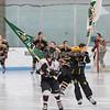 Hockey Girls Maple Grove vs. NMS 1-28-17