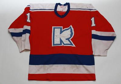 IHL Kalamazoo Wings 1980s