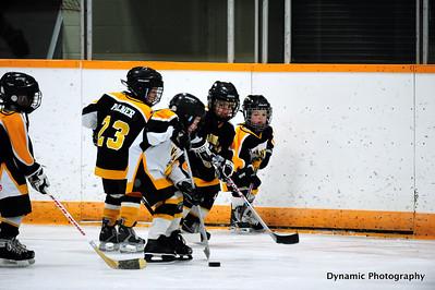 Future Foothills Bison Pre-Game Jan 27 2012