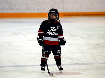 Foothills Bisons Vs Calgary NW Bruins Feb 12 2010