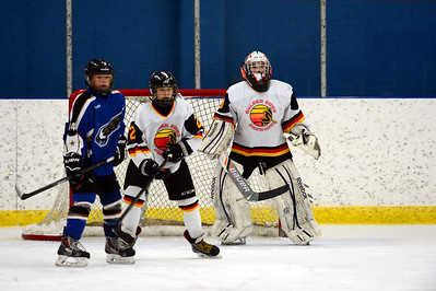 Foothills Bisons PeeWee AA vs Taber Golden Suns Feb 23 2014